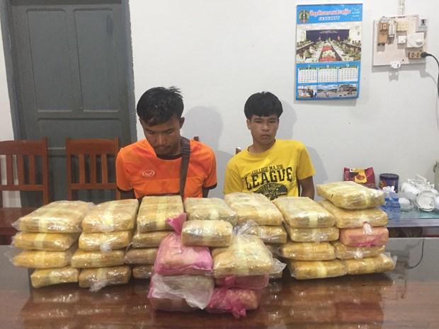 Incautan en la frontera entre Vietnam y Laos cargamento record de drogas hinh anh 1
