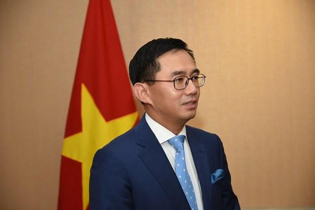 Asiste Vietnam a reuniones del Grupo encargado de Iniciativa para Integracion de ASEAN hinh anh 1
