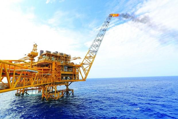 Confirma su potencia la ingenieria mecanica de la industria gasifera de Vietnam hinh anh 1