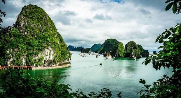 Proyectan mejorar propaganda en el exterior del turismo de Vietnam hinh anh 1