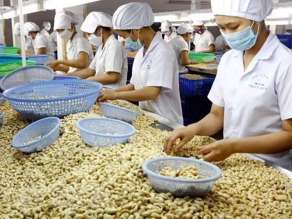 Destacan ventajas del intercambio comercial entre Vietnam e Israel hinh anh 1