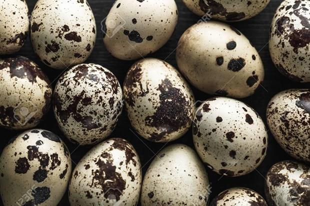 Suspende Singapur la importacion de huevos de codorniz de Malasia hinh anh 1