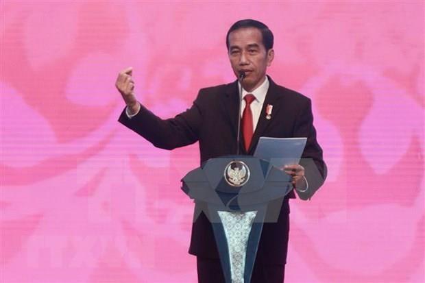 Crece oposicion en Indonesia a nueva ley que afecta lucha contra la corrupcion hinh anh 1