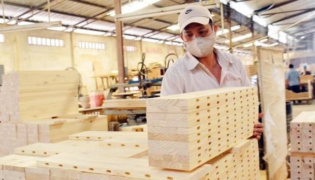 Ingresa Vietnam casi ocho mil millones de dolares por exportaciones silvicolas en nueve meses hinh anh 1