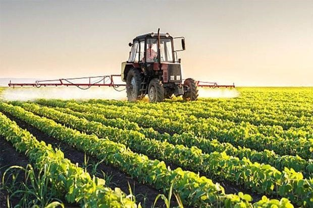 Prohibira Tailandia el uso de tres productos quimicos en la agricultura hinh anh 1