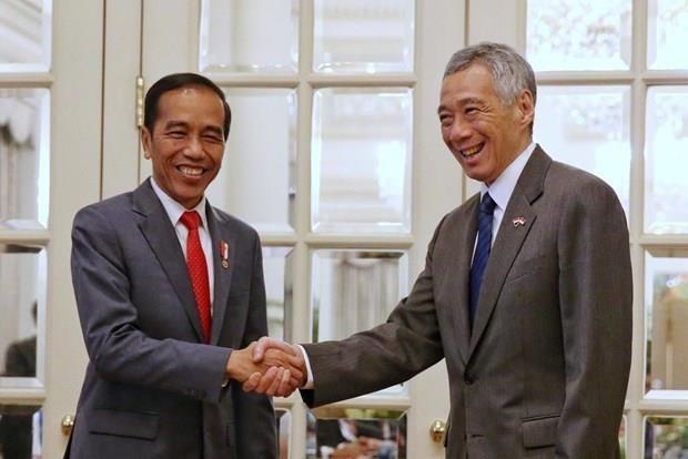 Alcanzan Singapur e Indonesia acuerdo sobre temas aereos y militares hinh anh 1
