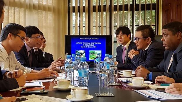 Cooperan Vietnam y Japon para apoyar al desarrollo socioeconomico de Mozambique hinh anh 1