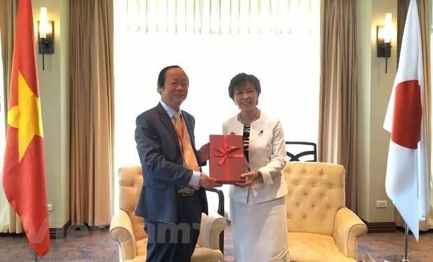 Espera Vietnam recibir asistencia japonesa en el tratamiento de residuos hinh anh 1