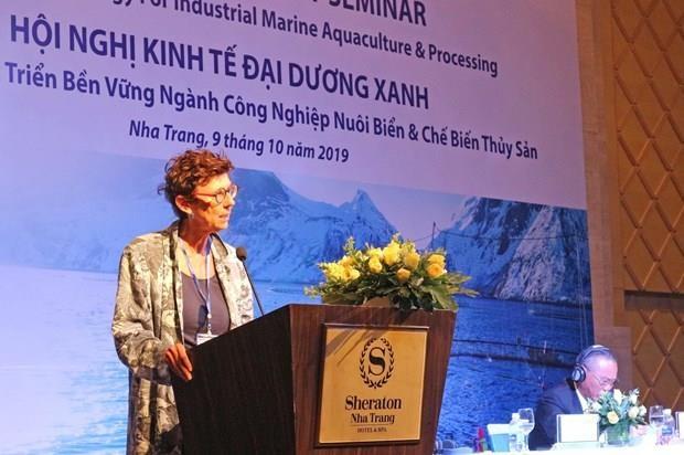 Intercambian Vietnam y Noruega experiencias sobre acuicultura marina hinh anh 1