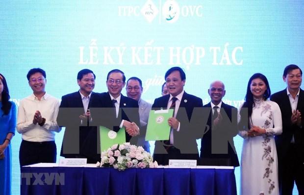 Fortalecen conectividad entre empresarios vietnamitas dentro y fuera del pais hinh anh 1