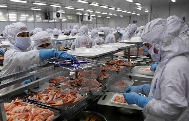 Senal alentadora para exportaciones de Vietnam a China hinh anh 1