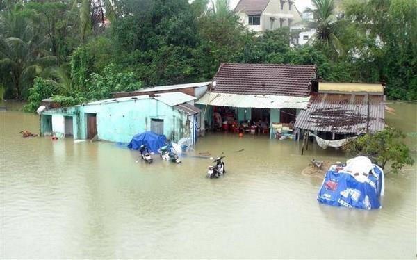 BAD presta asistencia a provincia vietnamita para mitigacion de desastres naturales hinh anh 1