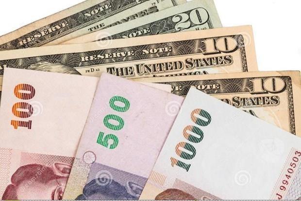 Alcanza moneda nacional de Tailandia su maxima cotizacion en seis anos hinh anh 1