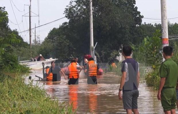 Vietnam y Japon intercambian experiencias en prevencion de inundaciones hinh anh 1