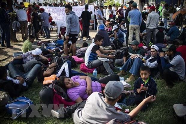 Crea pacto migratorio mundial nuevas oportunidades y responsabilidades para Vietnam hinh anh 1
