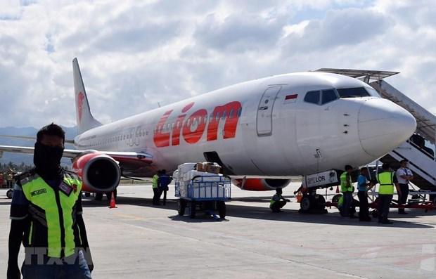 Aerolinea de Indonesia Lion Air realizara primera oferta publica de acciones al publico hinh anh 1