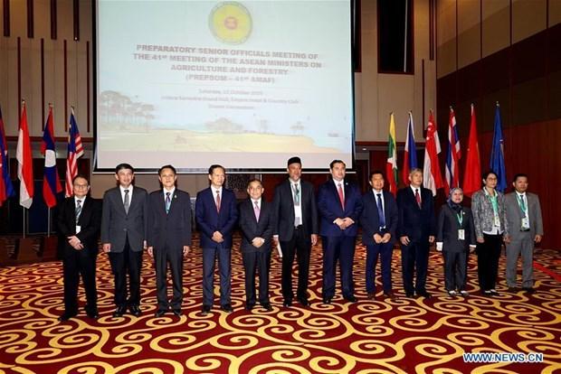Destacan importancia de lazos entre paises de la ASEAN para avance de Brunei hinh anh 1