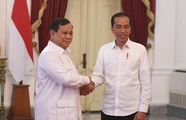 Indonesia considera posibilidad de establecer una coalicion gubernamental hinh anh 1