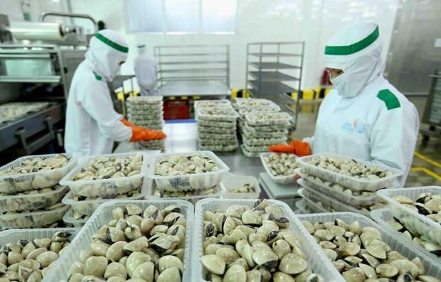 China permite importacion de otros tres productos acuaticos de Vietnam hinh anh 1