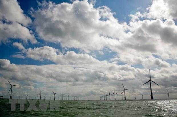 """Empresa japonesa apoya a Indonesia en establecimiento de sistema de """"energia verde"""" hinh anh 1"""