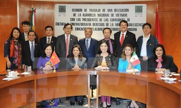 Intercambian Vietnam y Mexico experiencias legislativas en asuntos culturales y educativos hinh anh 3