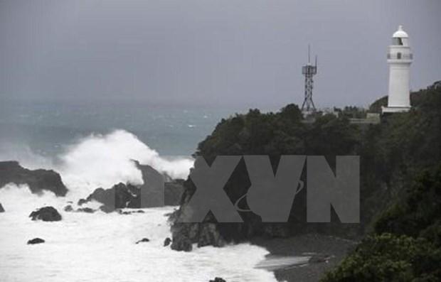 Rescatan un marinero vietnamita tras naufragio en Japon hinh anh 1