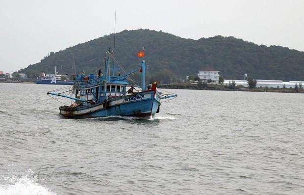 Aplica Vietnam recomendaciones de la UE contra la pesca ilegal, no declarada y no reglamentada hinh anh 1