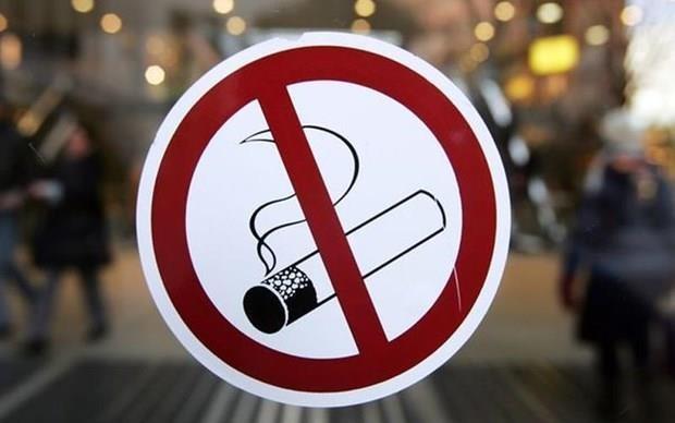Valoran en Malasia prohibicion de uso de cigarrillos electronicos hinh anh 1