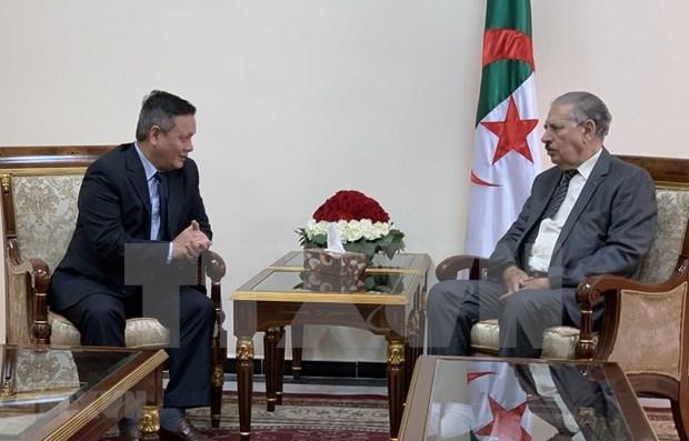 Patentizan en Argelia compromiso de fomentar cooperacion multifacetica con Vietnam hinh anh 1