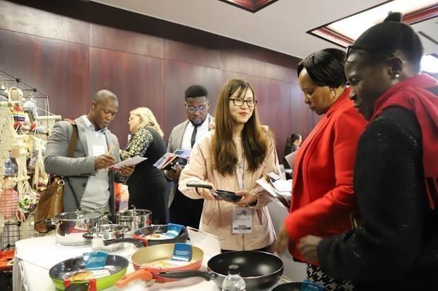 Promueven Vietnam y Sudafrica la colaboracion economica hinh anh 1
