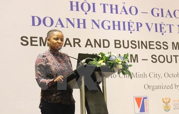 Buscan empresas sudafricanas oportunidad de cooperacion con Vietnam hinh anh 1