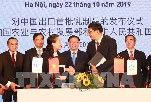 Exporta Vietnam primer lote de productos lacteos a China hinh anh 1