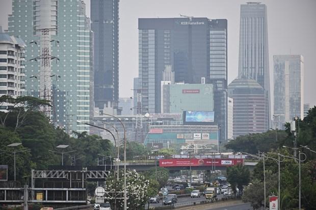 Aumenta en Indonesia tierra quemada por incendios forestales en 2019 hinh anh 1