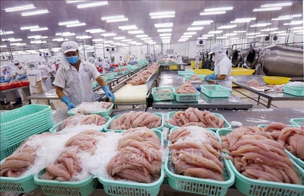 Recorta Estados Unidos aranceles antidumping sobre filetes de pescado de Vietnam hinh anh 1