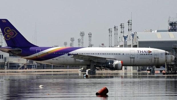 Desmiente Thai Airways informacion sobre cancelacion de vuelos hinh anh 1