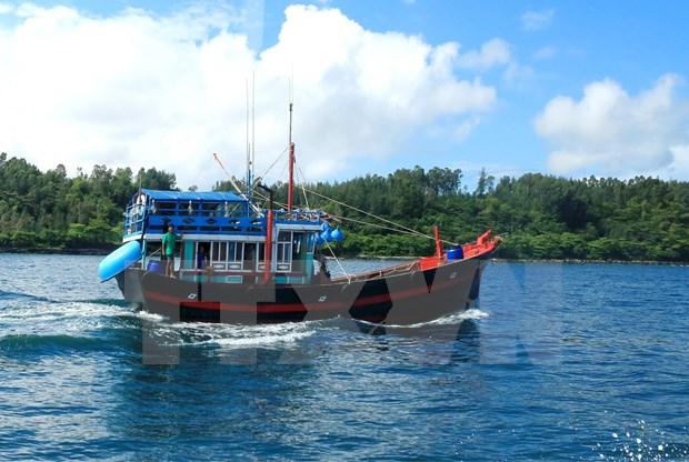 Ofrecen asistencia financiera a pescadores vietnamitas en alta mar hinh anh 1