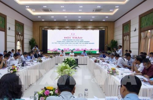 Presentan en Vietnam experiencias japonesas sobre desarrollo de cooperativas agricolas hinh anh 1