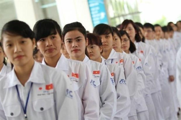 Destacan a Japon y Taiwan scomo los mejores mercados para la mano de obra de Vietnam en 2019 hinh anh 1