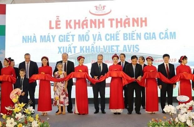 Inauguran moderna planta de procesamiento de aves de corral en Thanh Hoa hinh anh 1