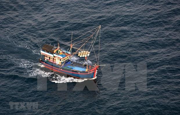 Vietnam avanza en cumplimiento de recomendaciones de Comision Europea sobre lucha contra IUU hinh anh 1