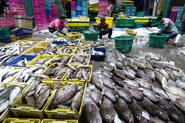 Estados Unidos suspende exencion fiscal a algunos productos de Tailandia hinh anh 1