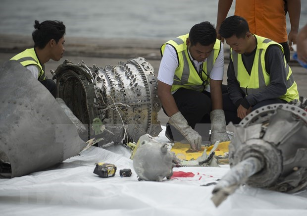 Indonesia revela final conclusion sobre accidente de Lion Air hinh anh 1