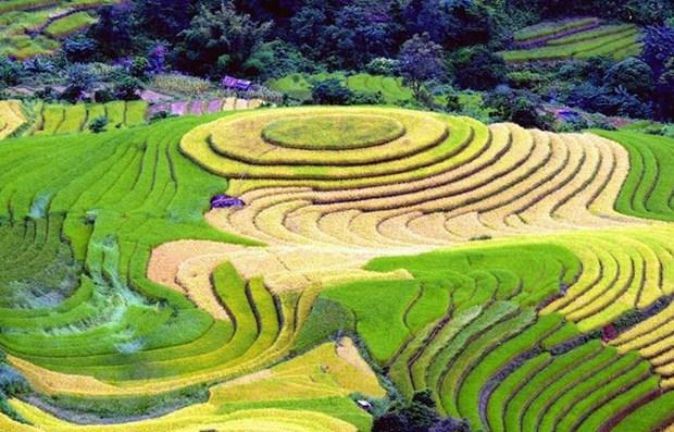 Destacan a Vietnam como destino impresionante en Feria Internacional de Turismo y Viajes de Montreal hinh anh 1