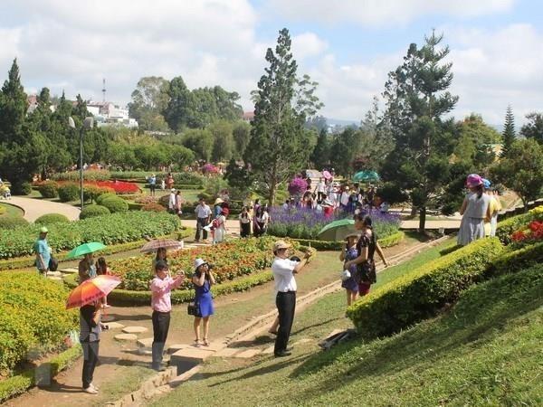Festival de Flores de Da Lat incluira amplia gama de actividades hinh anh 1
