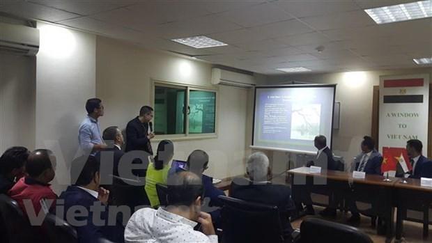 Impulsan Vietnam y Egipto cooperacion en sectores potenciales hinh anh 1