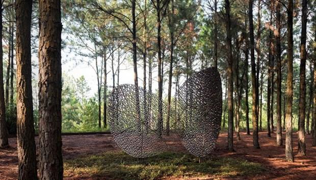 Resaltan artistas extranjeros en Vinh Phuc la armonia entre la naturaleza y los seres humanos hinh anh 1