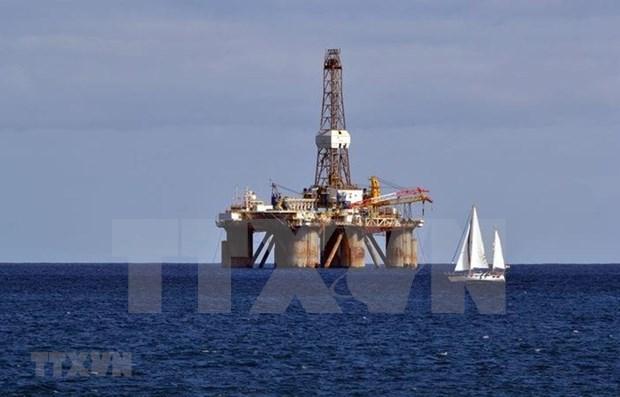 Apunta Indonesia a producir 1 millon de barriles de petroleo por dia en 2030 hinh anh 1