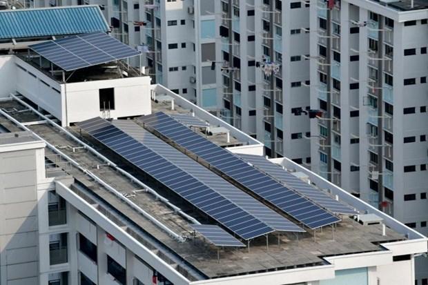Proyecta Singapur multiplicar siete veces la generacion de electricidad solar hinh anh 1