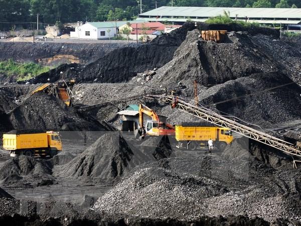 Sudeste Asiatico puede devenir en importador neto de combustible fosil, alerto AIE hinh anh 1
