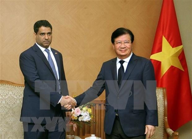 Viceprimer ministro de Vietnam promete condiciones favorables para empresas de EAU hinh anh 1